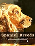 Spaniel Breeds: Choose Best dog for you and your family