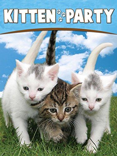 Kitten P