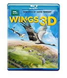 Wings 3D (3D/Blu-ray)