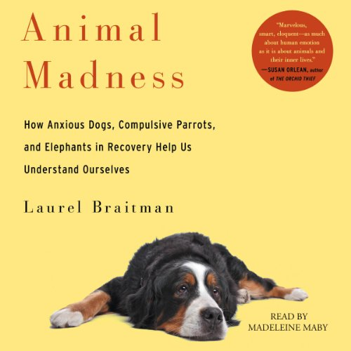 Animal Madness audiobook cover art