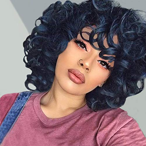 Short Curly Synthetic Hair Wigs for Black Women Andromeda Afro Loose Kinky Curly Heat Resistant Fiber Hair Wig for African American Black Women (Big Curly)