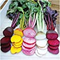 Jazmy 200PCS Seeds Beetroot Mixed Blood Yellow White Color Vegetable Home Garden High Germination