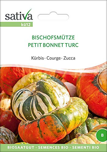 Sativa Rheinau kü12 Kürbis Bischofsmütze (Bio-Kürbissamen)