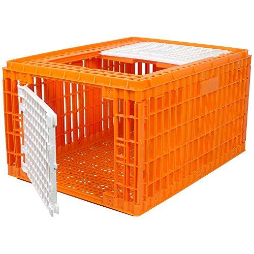RentACoop Carrier Crate (30' L x 23' W x 17' H) for Turkeys/Ducks/Geese,etc.