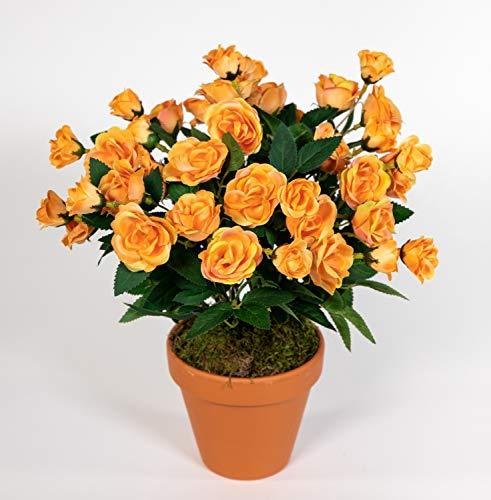 Seidenblumen Roß Rosenbusch 30cm orange im Topf ZF Kunstpflanzen Kunstblumen künstliche Blumen Rosenstrauch Rosen