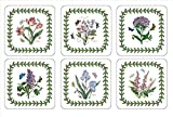 Portmeirion offers even more to love about the Botanic Garden pattern in casual, cork-backed coasters. Featuring six rich botanical motifs and true-to-life detail from the beloved dinnerware collection. INCREDIBLE ARTISTRY: These delightful Botanic G...