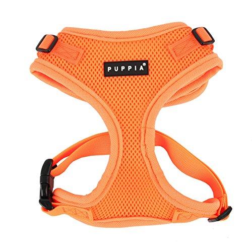 Puppia Neon Hundegeschirr für kleine bis mittelgroße Hunde - verstellbar und sehr weich - Auch als Welpengeschirr verwendbar -Antizuggeschirr für Hunde, Orange, L