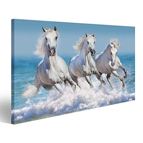 islandburner Bild auf Leinwand Pferd Herde laufen Galopp in Wellen im Ozean Wandbild, Poster, Leinwandbild GFY