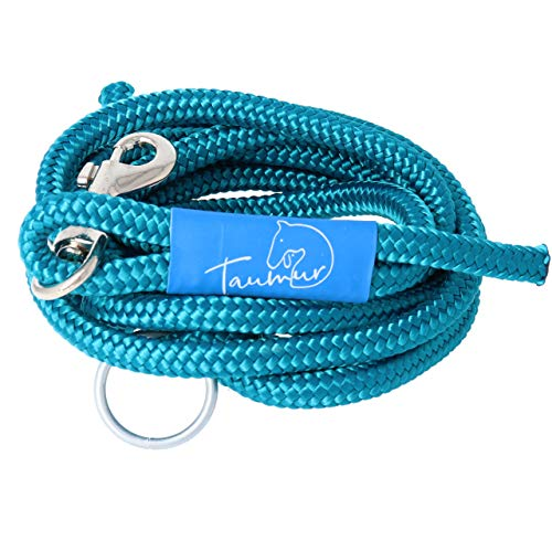 Thörungur - zweifach verstellbare Hunde-Tauleine - blaugrün - Leine für mittelgroße Hunde aus robustem PPM