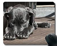 YENDOSTEENマウスパッド面白いカスタマイズされた、子犬ペットかわいい茶色の座っている悲しい肖像画ゲーミングマウスパッド