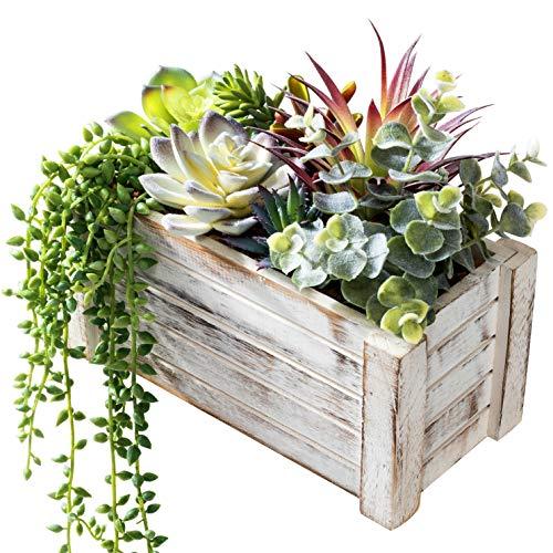 Artificial Succulents in Pots - Fake Succulent Plants, Artificial Plants for...