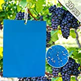 ZOORE 20 Stück blauen Leimtafeln gegen Thripse,...
