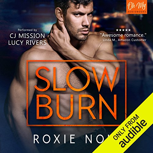 Slow Burn audiobook cover art