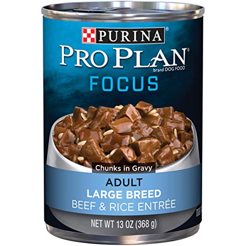 Purina Pro Plan Large Breed Gravy Wet Dog Food, FOCUS Beef & Rice...