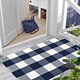 LEEVAN Cotton Buffalo Plaid Rugs 2' x 3' Checkered Gingham Rug Washable Woven Outdoor Porch Welcome Braided Door Mat for Layered Kitchen Farmhouse Bathroom Entryway Throw Carpet, White and Blue