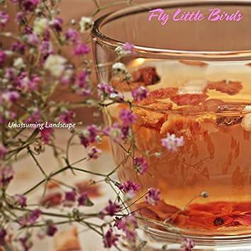 Fly Little Birds