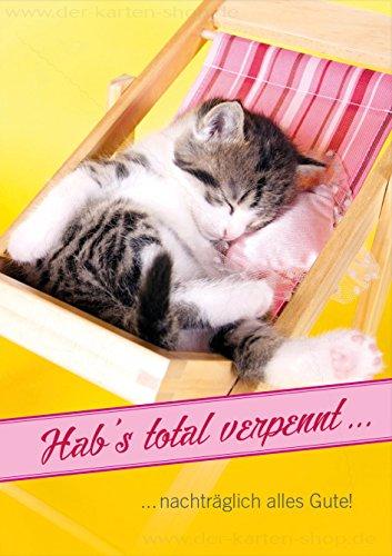 3 stuks dubbele kaart met envelop kaart verjaardagskaart verjaardag vergeet katje