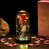 Glasseam La Bella Y La Bestia Se Levantó En Una Cúpula De Cristal con Luces LED Blancas Cálidas Flores De Cristal Eternas Regalo De Cumpleaños Encantada para Ella para El Aniversario