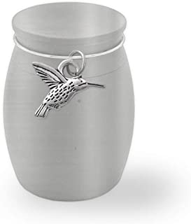 Small Mini Hummingbird Memorial Ashes Holder Container Jar Vial Brushed Stainless Steel Cremation Funeral Urn Bird Watching