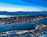 HUILIYI Pintura Digital de niños Adultos de bricolajeLuces costeras Principiante DIY Pintura al óleo Set de Regalo preimpreso Lienzo Artista decoración del hogar 16 x 20 Pulgadas(sin Marco)