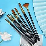 No es fácil de quitar el cabello, pincel de nailon de 10 piezas, para diversos requisitos de pintura, pincel de pintura con ventilador
