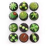 AEKAN - Vela de cactus con forma de cactus, hecha a mano, delicada, para decoración del día de San Valentín, regalo de fiesta, adorno de Navidad