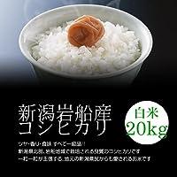 【母の日プレゼント・カード付】岩船産コシヒカリ 白米(精米) 20kg(10kg×2袋)/モチモチ食感が人気の新潟米