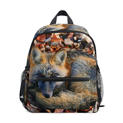 Fox - Mochila Escolar para niños, Escuela o para Viajar