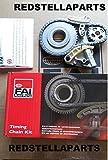 FAI Pompe à huile Pignon de chaîne Tendeur de courroie pour A4A6Passat 2.0Tdi