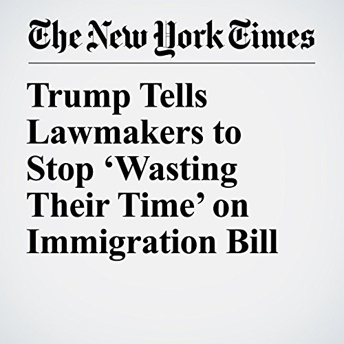 Trump Tells Lawmakers to Stop 'Wasting Their Time' on Immigration Bill copertina