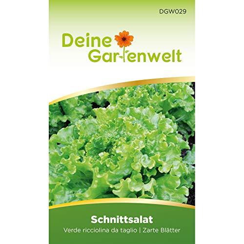 Schnittsalat Verde ricciolina da taglio | Salatsamen | Samen für Salat | Schnittsalatsamen | Saatgut