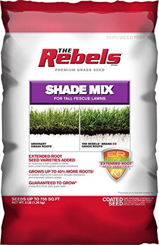 Pennington Rebel Shade Tall Fescue Mix Powder Coated Seed, 3 lb.