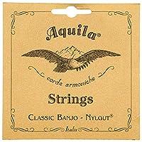 Aquila AQ-5B バンジョー弦 5弦 ナイルガット ミディアムゲージ アキーラ