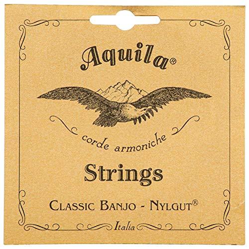 Aquila Medium 5B New Nylgut Banjo 5-String Set (DBGDG-Tuning)