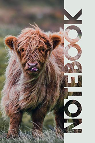 Notebook: Aberdeen Angus Practical Composition Book for Highland Cow Farmers
