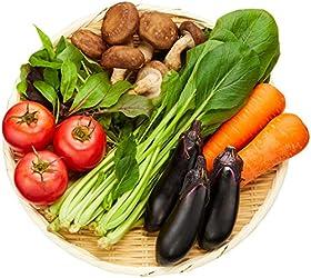国内産 Tokyo Organic 有機野菜 おまかせセットM 1袋 1000g