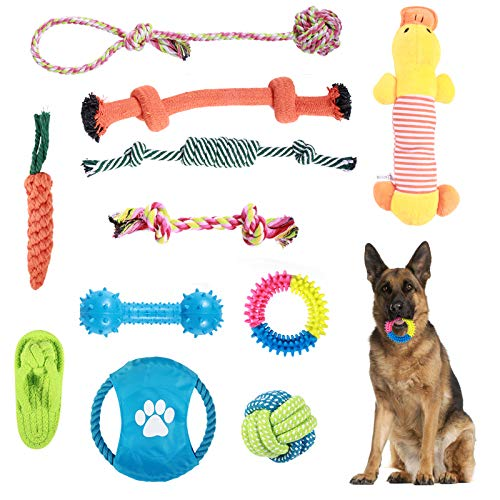 ADSDIA Dog Toys, Dog Chew Toys, Dog Rope Toys, Dog Leash Toys Suitable for Puppy Dogs or Medium Doys to Pass The Time to Prevent Boredom -11 Different Types of Dog Chew Toy Suits