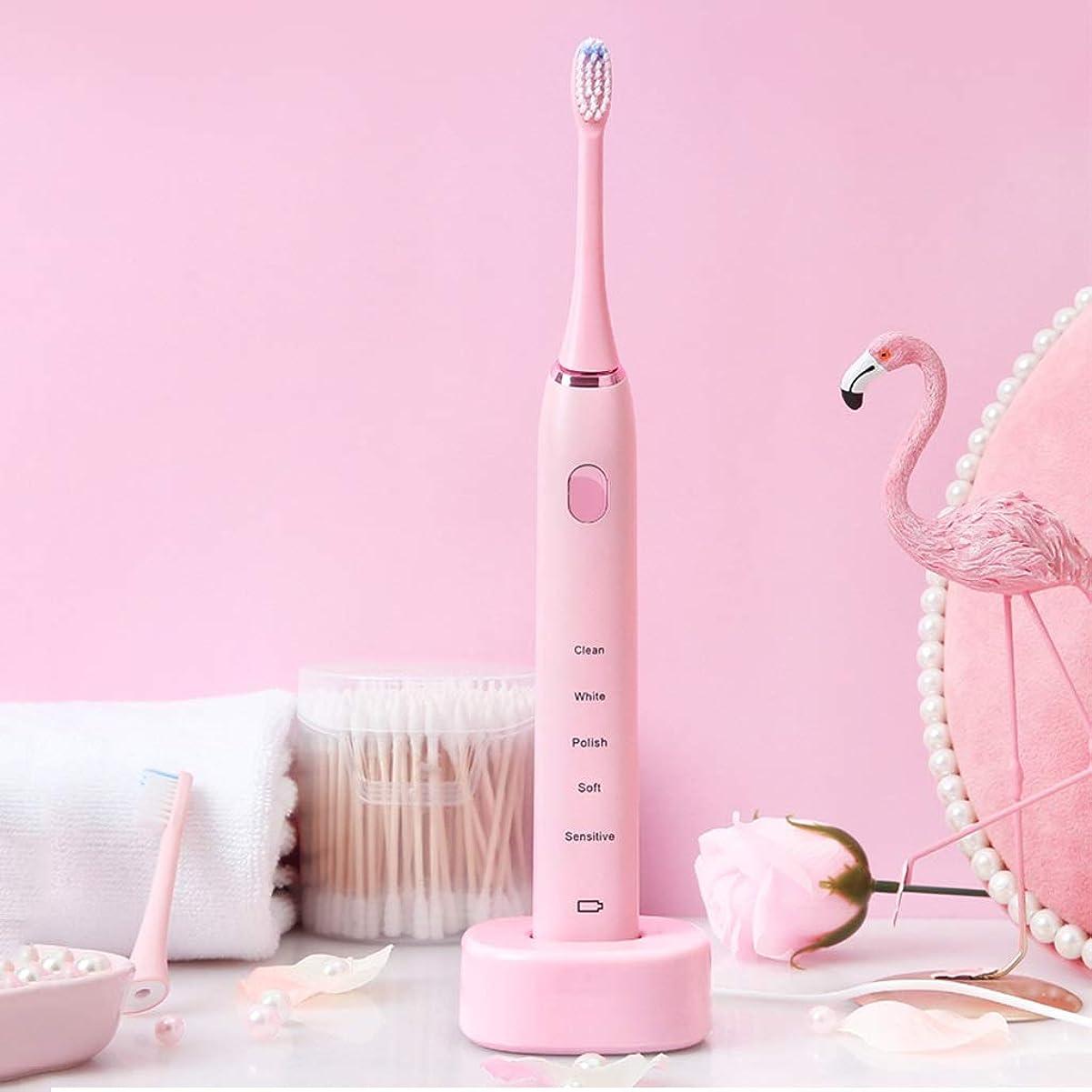 赤外線申込みコール電動歯ブラシ 音波再充電可能な電動歯ブラシの防水深くきれいな剛毛の理性的な歯ブラシ (色 : ピンク)