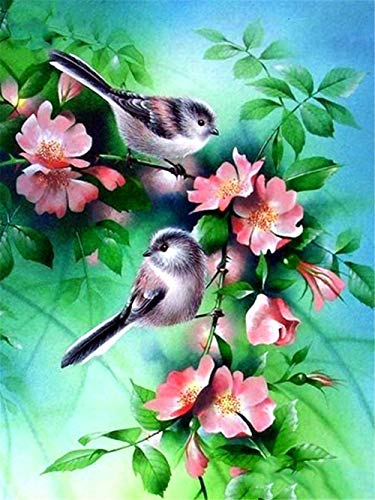 DIY 5D Diamond Painting Kits for Adults Round Full Drill Bird Number Kits Embroidery Pictures Arts Craft for Home Wall Decor 50x70cm(19.6x27.5inch) Y1343Z