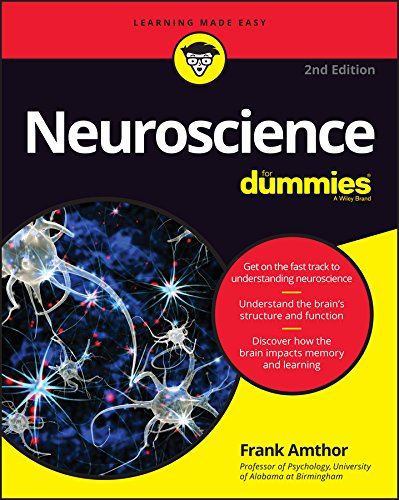 Compare Textbook Prices for Neuroscience For Dummies 2 Edition ISBN 9781119224891 by Amthor, Frank