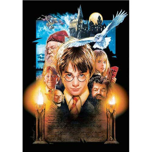 Diamond Painting Embroidery Cross Craft Stitch Cartoon Mural Decor Kids Gifts Harry Potter Characters-40 * 60C