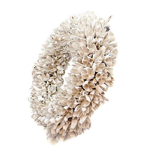 COURONNE Türkranz mit Aufhängevorrichtung 40cm in weiß, gefertigt aus Bakuli-Früchten - Deko aus Naturmaterialien als Herbstdeko im Shabby chic Design