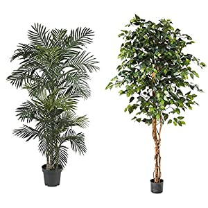 Silk Flower Arrangements Nearly Natural 5289 6.5ft. Golden Cane Palm Silk Tree,Green & Natural 6ft. Ficus Artificial Trees, 72in, Green