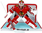 Imports Dragon NHL Figur Ed Belfour Limited Edition with Net -