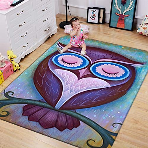 Area Rug Carpet,Cartoon Painted Owl 3D Digital Print Carpet Non-Slip Area Rug For Living Room Bedroom Dining Room Border Floor Protection Mat Home Decoration,50X80Cm
