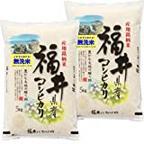 新米入荷 無洗米 令和3年産 新米 福井産コシヒカリ 10kg (5kg×2袋)
