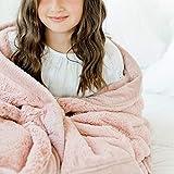 SARANONI Super Soft Comfy Lush 40' x 60' Blanket for Kids and Teens (Ballet Slipper Pink)