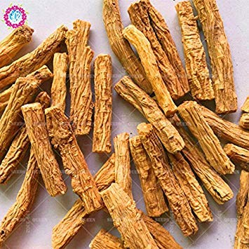 200 pcs/sac réel graines Codonopsis plantes graines de légumes herbes médicinales vivaces en pot Maison et jardin 95% bonsai taux de germination 1