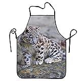 N\A Divertente Grembiule Chef Cucina Grembiule da Cucina Bavaglino Leopardo delle Nevi Pietre Carnivore Moss Home Durable