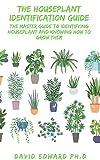 THE HOUSEPLANT IDENTIFICATION GUIDE: O guia principal para identificar plantas de casa e saber como cultivá-las